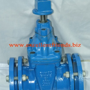 DI Gate Valve Mechanical Type